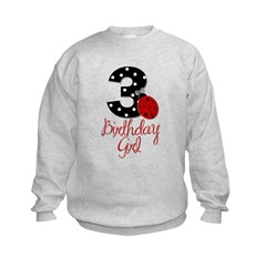 3 Ladybug Birthday Girl Sweatshirt