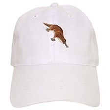 Platypus Animal Baseball Cap