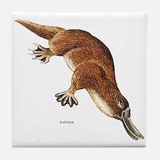 Platypus Animal Tile Coaster