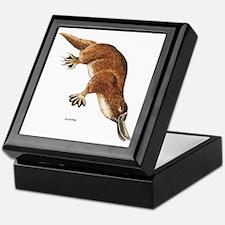 Platypus Animal Keepsake Box
