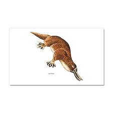 Platypus Animal Car Magnet 20 x 12