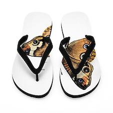 Buckeye Butterfly Flip Flops