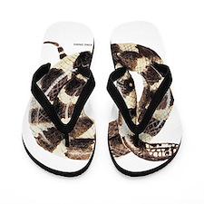 King Snake Flip Flops