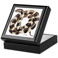 King Snake Keepsake Box