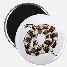 King Snake Magnet