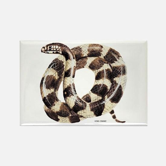 King Snake Rectangle Magnet