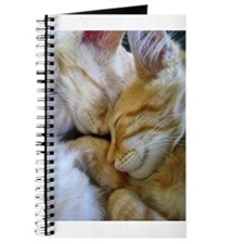 Snuggle Kittens Journal