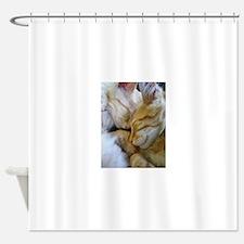 Snuggle Kittens Shower Curtain