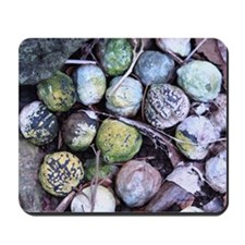 Nuts about Molokai Mousepad