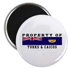 Property Of Turks & Caicos Magnet