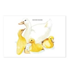 Duck and Ducklings Postcards (Package of 8)