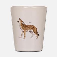 Coyote Wild Animal Shot Glass