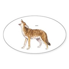 Coyote Wild Animal Decal