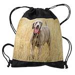 The Dane cal.png Drawstring Bag