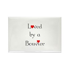 Loved by a Bouvier Rectangle Magnet (100 pack)