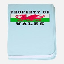 Property Of Wales baby blanket