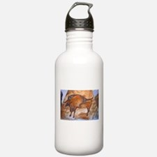 Alta Mira Bison Cave Painting Water Bottle