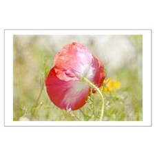 pretty red poppy Posters