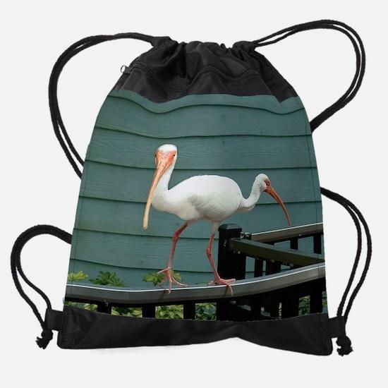 Bird2HeadBlk-10x8 Drawstring Bag