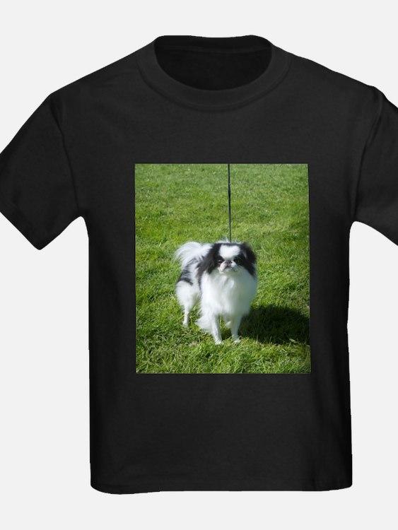 car magnet T-Shirt