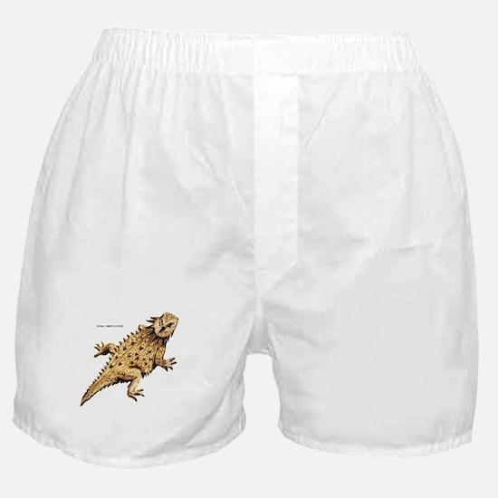 Regal Horned Lizard Boxer Shorts