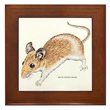 White-Footed Mouse Framed Tile