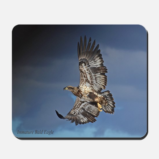 Immature Bald Eagle Mousepad