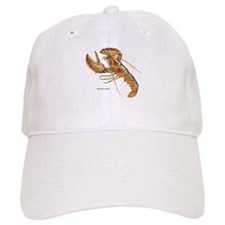 Northern Lobster Baseball Cap