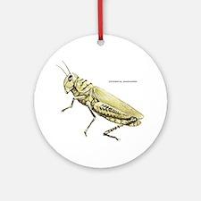 Grasshopper Insect Ornament (Round)