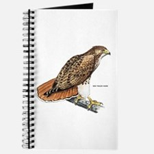 Red-Tailed Hawk Bird Journal