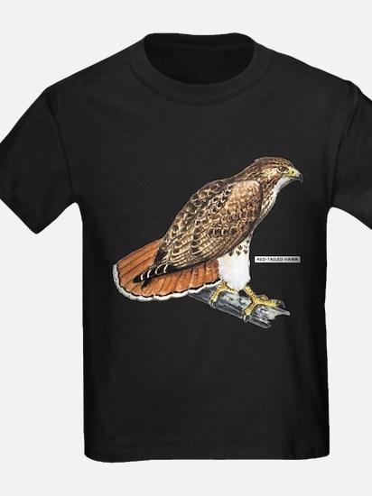 Red-Tailed Hawk Bird T