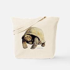 Galapagos Tortoise Tote Bag