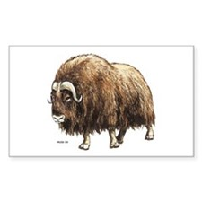 Musk Ox Decal