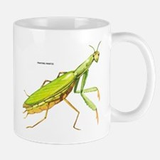Praying Mantis Insect Mug