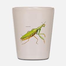 Praying Mantis Insect Shot Glass