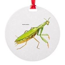 Praying Mantis Insect Ornament