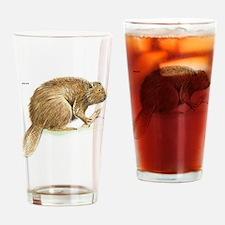 Beaver Animal Drinking Glass