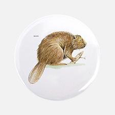 "Beaver Animal 3.5"" Button (100 pack)"