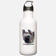 Just Hanging Around! Sloth Water Bottle
