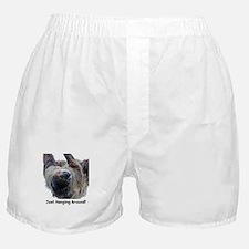 Just Hanging Around! Sloth Boxer Shorts