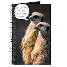 Meerkat Journal, Two Humorous Meerkats