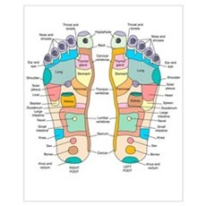 Reflexology foot map, artwork Poster
