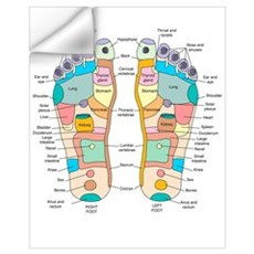 Reflexology foot map, artwork Wall Decal