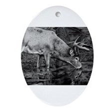 Deer Drawing 2013 Ornament (Oval)