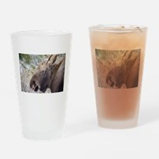 He is Looking At You Drinking Glass