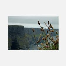 Irish Landscape Rectangle Magnet