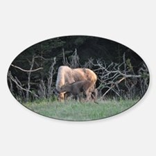 Mother Moose and Calf Decal