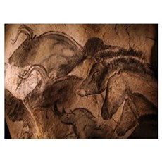 Stone-age cave paintings, Chauvet, France Canvas Art