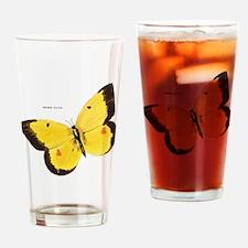 Orange Sulfur Butterfly Drinking Glass