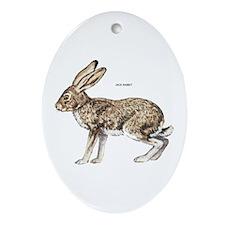 Jack Rabbit Ornament (Oval)